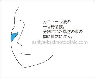 かに2芦屋柿本.jpg