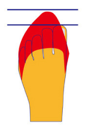 くつくつ靴.jpg