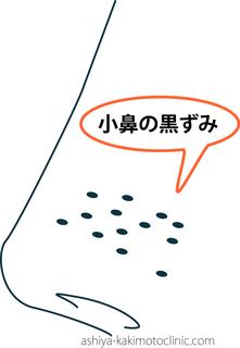 こばな1.jpg