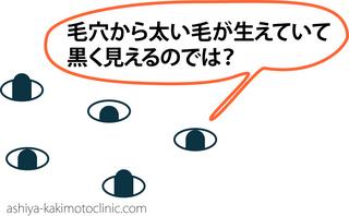こばな2.jpg