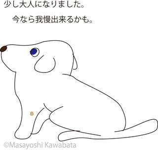 みずいぼ4.jpg