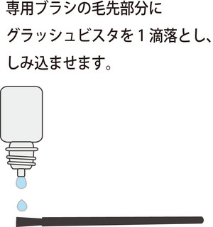 グラッシュ4.jpg