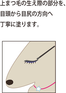 グラッシュ5.jpg