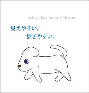 目のイボ8芦屋柿本.jpg