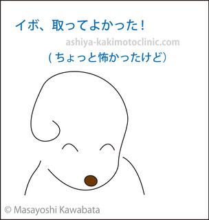 目のイボ9芦屋柿本.jpg