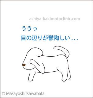 menoibo1芦屋柿本.jpg